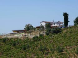 Tussen de wijngaarden ligt Casa Cologna in Abruzzo Vakantie in Abruzzo